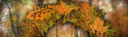 thanksgiving-day-celebration-crafts-website-header